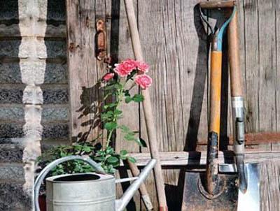 садовая лопата и штыковая